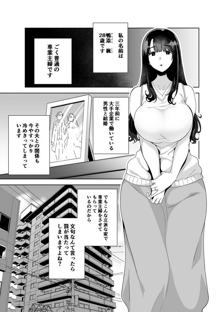れ 寝取ら エロ 漫画